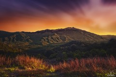 Pyrnes orientales - Massif du Canigou (JD Photographie.) Tags: light sunset france julien long exposure photographie 200 100 jd pyrnes canigou orientales delaval 100faves 200faves canon40d