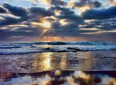 Lights of Dawn Reflecting Layers of Beauty (emphotos103 (Away )) Tags: morning travel light shells beauty dawn seaside sand seasons pacific rays