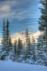 Icefield Parkway HDR (James.Ireland) Tags: park trees sky lake snow canada mountains tree clouds iso100 nikon jasper alberta banff montain provincial d800 icefieldparkway