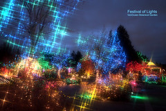 Festival of Lights at VanDusen Botanical Garden (どこでもいっしょ) Tags: christmas xmas canada colors vancouver lights holidays colorful bc nightshot led sparkle softfocus bluehour xmaslights festivaloflights xmastree familyevent m43 vandusenbotanicalgarden artfilter mirrorless starlighteffect microfourthirds olympusm12mmf20 olympusomdem5