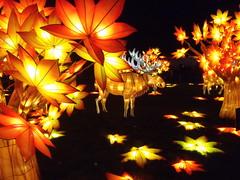 #illuminasia  #autumn (Mr. Happy Face - Peace :)) Tags: illuminations lumen lux luz light luce licht  lumire  illuminasia autumn art2016 yyc calgary