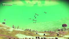 Sky Whales (peterlmorris) Tags: videogame nomanssky hellogames sciencefiction space spaceship fighter starfighter animal alien