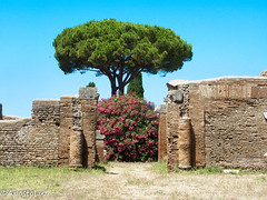 Roman House & Garden ((GreenCross Photography)) Tags: rome roma italy ancient architecture garden tree flower sky