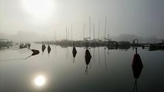 Misty morning. Kaivopuisto, Helsinki, July 26th 2016. #mist #morning #sumu #fog #aamu #kaivopuisto #helsinki #visithelsinki #meri #sea #landscape #seascape #maisema #sonyxperiaz5 (Sampsa Kettunen) Tags: landscape kaivopuisto helsinki sea meri maisema sonyxperiaz5 fog sumu visithelsinki mist seascape aamu morning
