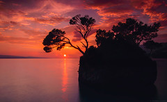 Sunset silhuette (szenasia) Tags: trees sunset color water beach travel sun clouds rock tree rocks orange silhouette nikon colorful riviera adriatic croatia makarska brela