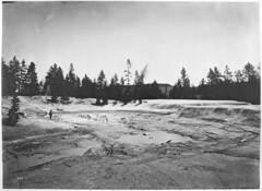 Mud Geyser (YellowstoneNPS) Tags: yellowstonenationalpark gardiner mt usa