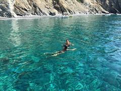 Oggi vi portiamo a fare un tuffo a Punta Nera a #chiessi #marciana nello scatto di @francesco_caterino. Continuate a taggare le vostre foto con #isoladelbaapp il tag delle vostre vacanze all'#isoladelba. http://ift.tt/1NHxzN3 (isoladelbaapp) Tags: isoladelba elba visitelba portoferraio porto azzurro capoliveri marciana marina di campo rio
