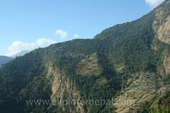 Chhomrong (nepal-explorer) Tags: 2012nepalabc chhomrong annapurna trekking nepaltrek abctrekking nepalexplorer hari