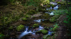 stirling 2-1 (David Fitzell Photography) Tags: stirling scotland glen river stream mountain nature long exposure sony a7ii 35mm trees tree water flow flowing tourist travelling