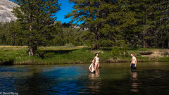 Swimmers at Yosemite.jpg (david byng) Tags: tuolumneriver california summer swimming stream sierranevadamountains yosemitenationalpark 2016 vacation roadtrip mountains cadencenestataylor maxbyng tylerbyng