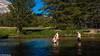 Swimmers at Yosemite.jpg (david byng) Tags: tuolumneriver california summer swimming stream sierranevadamountains yosemitenationalpark 2016 vacation roadtrip mountains cadencenestataylor maxbyng tylerbyng