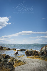 Coaxing the waves in? (grilljam) Tags: seamus 4yrs summer august2016 mitchellfield harpswell whatagorgeousday extremelywindy