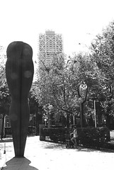 Piernas de mujer (FMEGS) Tags: urban blackandwhite blanconegro bn city paysage barcelona light flickr nikon downtown d3000 tamron street streetart contrast monument white tree espaa spain blancoynegro old vintage