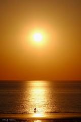 Le pcheur  pied (jpto_55) Tags: soleil soleilcouchant pcheur pcheurpied reflet xe1 fuji fujifilm omlens om135mmf28 notredamedemonts vende france plageduboissoret ngc