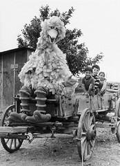 Big Bird driving the wagon (Tom Simpson) Tags: sesamestreet vintage television behindthescenes bigbird carolspinney wagon