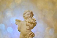 DSC_5114 (Milena Z) Tags:          442      angelo angel colore color luce giocodiluci ombra bokeh helios helios442 manuallens senzafiltri vladikavkaz