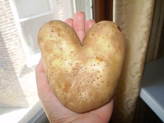 With my heart in my hand (candiceshenefelt) Tags: heart potato love funny fun hand
