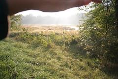 IMG_2860 (Annie Aguirre) Tags: ecp elkhart county parks park benton spillway nature birding birders people walk walks fall
