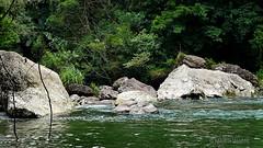 Las Hamacas (marthahari) Tags: airelibre paisaje agua ríotecolutla río h2o cascada méxico puebla mx naturaleza nature water