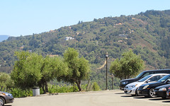 IMG_3732 (kz1000ps) Tags: tour2016 california sanfrancisco bayarea saratoga mountainwinery vineyard siliconvalley aerial vista skyline america unitedstates usa scenery landscape