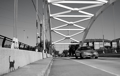 Dunlavy Street Through Arch Bridge over US 59, Houston, Texas 1211071022BW (Patrick Feller) Tags: graffiti cat mouse dunlavy street houston harris county texas us highway hwy 59 southwest freeway overpass through arch bridge monochrome bw black white blackandwhite blackwhite pontist united states north america