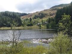 DSC00442 (Bob Green 52) Tags: water scotland loch lochard