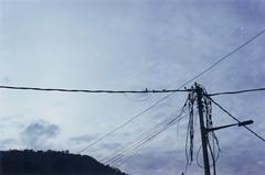 (yanngie) Tags: sky birds wires kodakproimage100 minoltaxd7 unitilitypole