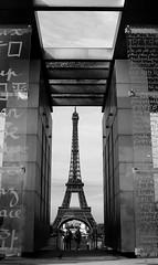 Torre Eiffel (Gatodidi) Tags: paris france blanco pareja negro ile torreeiffel francia isla