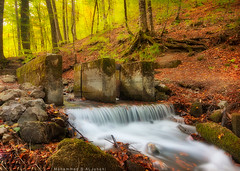 Autumn Colors (Mohammad S AlJuhani  ) Tags: autumn colors turkey bolu yedigller