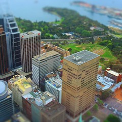 Sydney (Marc Toovey) Tags: city travel blue trees summer sky streets building green water architecture skyscraper buildings outdoors model harbour sydney australia nsw newsouthwales sydneyharbour royalbotanicgardens tiltshift