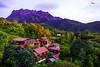 Kinabalu Park (jonjacob^^) Tags: nature landscape place resort serenity borneo beautifulscenery niceview mtkinabalu ranau beautifulplace kinabalupark northborneo stunningphoto akinabalu casers sabahsunset slta77v landscapeoftheyear sabahresort