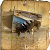 Streets of Salvaterra. EXPLORE #403 22Nov (Alda Cravo Al-Saude) Tags: magicuniverse magicunicornmasterpiece