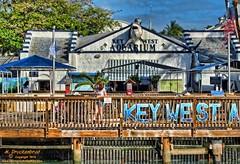 The Key West Aquarium (PhotosToArtByMike) Tags: aquarium shark florida stingray turtle fl keywest floridakeys tropicalfish monroecounty keywestaquarium