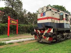 Lincoln (Sirio Jackson) Tags: argentina train tren railway lincoln locomotive ferrocarriles ferrocarril sarmiento alco argentinos ferrobaires fcdfs rsd35