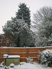 Lutterworth Snow (wood2925) Tags: snowscape lutterworth