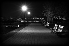 empty (Rob Dietrich Photography) Tags: longexposure nightphotography trees light blackandwhite bw usa fall night harbor md downtown baltimore tallbuildings 450d canon450d canonxsi
