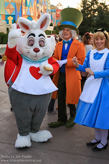 TDR Oct 2012 - Having fun in Wonderland