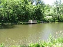 Photo - Kids' Fishing Pond