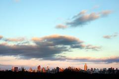 Central Park (joe holmes) Tags: nyc newyorkcity skyline centralpark