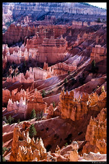 Bryce Canyon (msciarroni) Tags: usa events places brycecanyon viaggiodinozze
