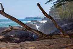Kauai Princeville (txslr) Tags: beach hawaii kauai princeville