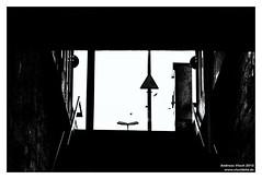 Silhouette 10 - 337/365 (Vlachbild) Tags: bird oneaday silhouette composition germany blackwhite europe daily trainstation photoaday trier pictureaday pfalzel birdinflight rhinelandpalatinate project365 sundaychallenge project365337 sonyslta65 2012inphotos carlzeisssal85f14zsony85mmf14planar project36502december2012