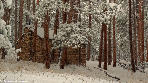 Photo - The Roosa Cabin