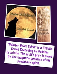 Winter Wolf (Goddess Crystalle) Tags: winter wild cold love beauty frozen lyrics wolf magick wind song magic goddess silk freezing windy independent unknown mysterious lone bleak strength wilderness lover icy aggressive independence predator psalms desolate powerful graywolf wolves tundra enchanted silky crescentmoon spells redwolf territorial songlyrics whitewolf spellbound coldwinter arcticwolf likesilk winterwolf lovespells crystalle holisticsound spellworker lovesonglyrics supremegoddess windywinter spellboundgemstm enchantedmysticaltools goddesscrystalletm crystallemagicksm crystallemagicsm likesilkhealingsounds goddesscrystalle likesilkhealingsoundstm gcrystalle lonegraywolf winterwolfspirit