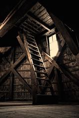 Stairs (Focusje (tammostrijker.photodeck.com)) Tags: old holland netherlands windmill stairs interior stairway inside ladder zaanseslag