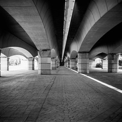 Film: Under the Bridge (rafa.esteve) Tags: ilfordfp4plus125 mediumformat 1x1 valencia blackandwhite blackwhite bridge