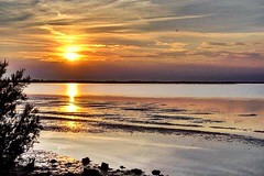 (Lorybusin) Tags: puestadelsol reflejos mar natura naturaleza nature landscape amazing peaceful awesome colori riflessi tramonto mare lignanosabbiadoro italy sunset sun