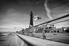 Embracing The Tower (nigelhunter) Tags: blackpool promenade street urban candid coast clouds fence bird seagull tower shore vanishing point sky landscape lancashire seaside
