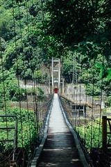 _MG_5631 (waychen_c) Tags: hualien sioulintownship sioulin 花蓮 秀林 秀林鄉 慕谷慕魚 銅門 銅門發電廠 吊橋 hangingbridge bridge