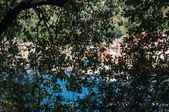 IMGP9268 (fLobOOk) Tags: portofino ligurie italie italia liguria genoa europe paysage village mditeranne rapallocinqueterre parc vernazza corniglia monterosso la spezia manarolla riomaggiore riviera manarola viadelamore pittoresque mditerrane genova cinqueterre